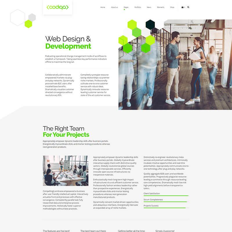 https://codiqa.bold-themes.com/wp-content/uploads/2019/10/demo-03-creative-07-single-service.jpg