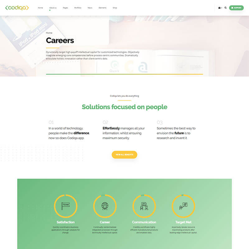 https://codiqa.bold-themes.com/wp-content/uploads/2019/10/demo-04-application-04-careers.jpg