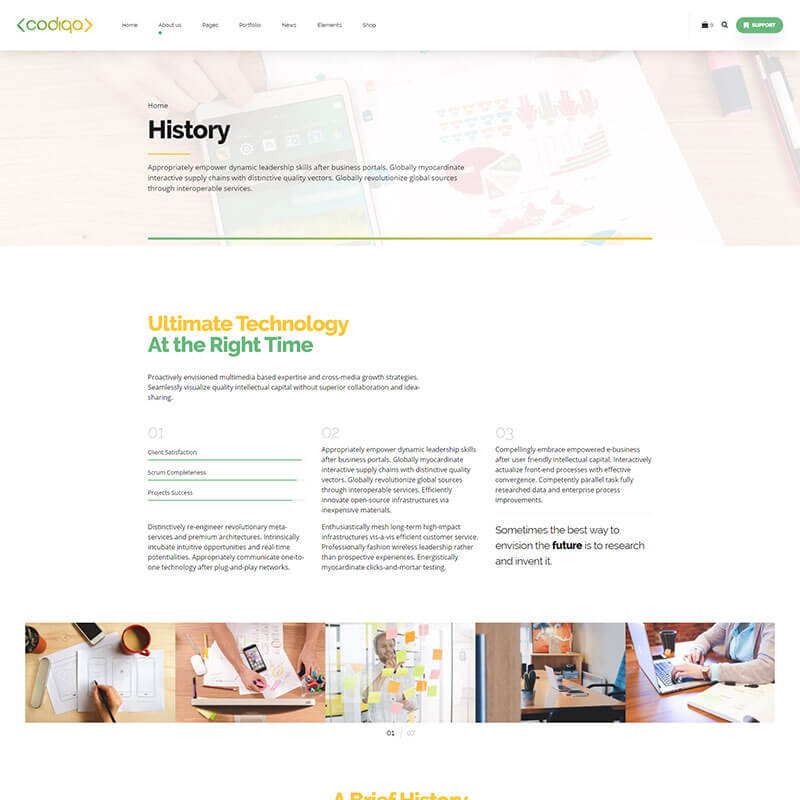 https://codiqa.bold-themes.com/wp-content/uploads/2019/10/demo-04-application-06-history.jpg