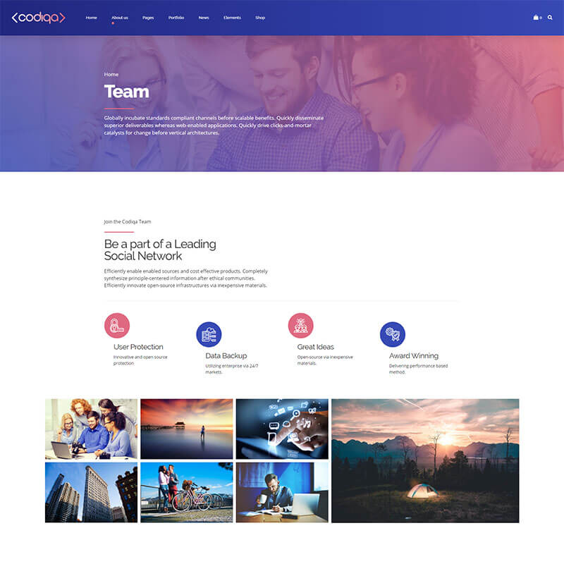 https://codiqa.bold-themes.com/wp-content/uploads/2019/10/demo-05-social-03-team.jpg